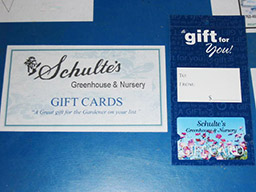 Schulte's Gift Cards
